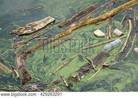 Water Source That Is Polluted With Various Garbage. Environment Pollution.