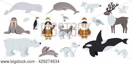 Polar Animals. Cute Arctic Animal, Walrus Bear Whale. Fun Antarctic Flat Wildlife, Penguin And Alask