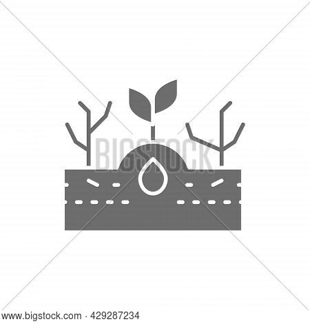 Plant With Weeds, Weed Control Grey Icon.