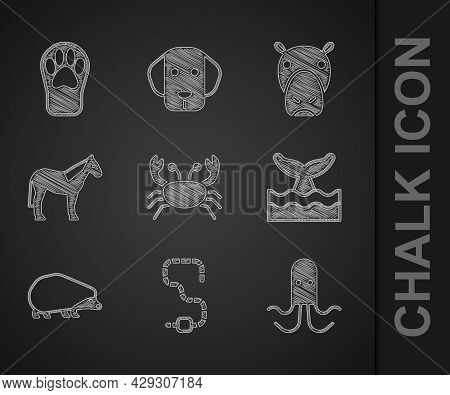 Set Crab, Worm, Octopus, Whale Tail In Ocean Wave, Hedgehog, Horse, Hippo Hippopotamus And Paw Print