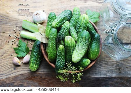 Fresh Cucumbers On A Wooden Table. Dill, Garlic And Spices. Preparation Of Pickled Cucumbers. Preser