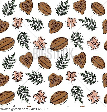 Hand Drawn Sketch Vector Seamless Background Pattern Of Walnut. Cute Simple Linear Pattern With Nuts
