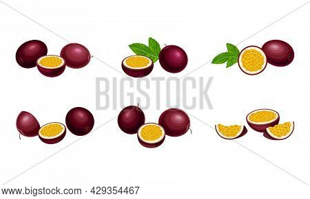 Round Dark Purple Passion Fruit With Juicy Flesh Containing Numerous Seeds Vector Set