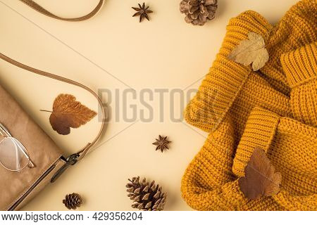 Top View Photo Of Yellow Pullover Leather Beige Bag Glasses Autumn Brown Leaves Anise And Pine Cones