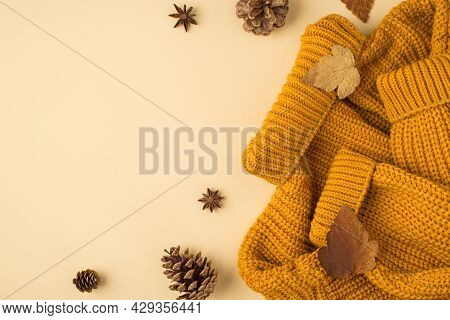 Top View Photo Of Yellow Sweater Autumn Brown Leafage Anise And Pine Cones On Isolated Light Beige B