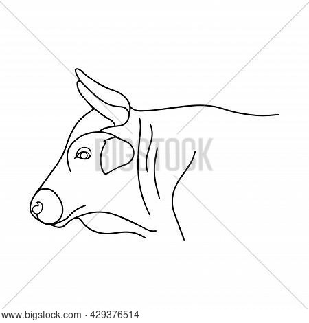 Linear Illustration Of A Bull. Vector Bull Head With Large Strong Horns. Cattle. Simple Buffalo Logo