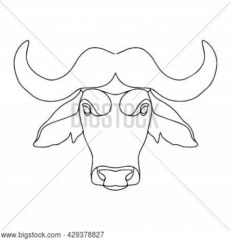 Vector Drawing Of A Bull. Buffalo Illustration In Linear Style For Coloring. Bull Coloring Page. Buf