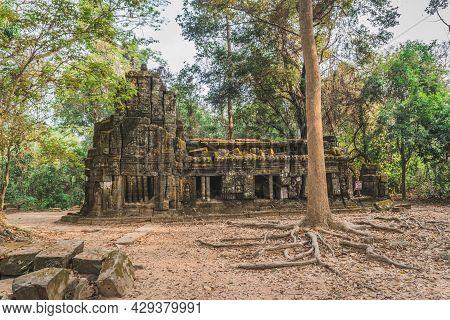 Huge Banyan Tree Ancient Angkor Wat Ruins Panorama Sunrise Asia. Banteay Kdei Temple. Siem Reap, Cam