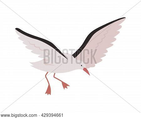 Flying Seagull Semi Flat Color Vector Character. Marine Animal. Bird With Spread Wings. Full Body An