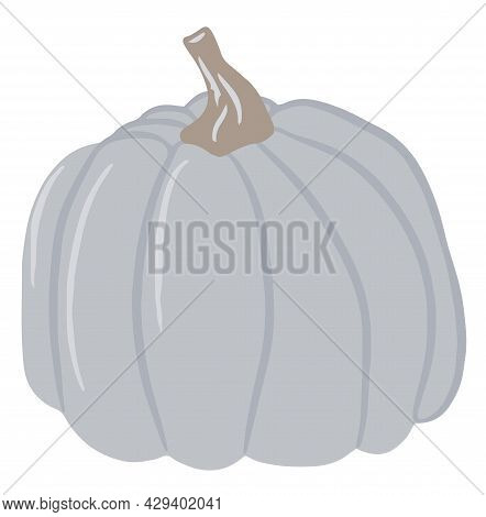 Cute Colored Pumpkin, Unusual Pumpkin, Single Illustration On An Isolated White Background, Autumn P