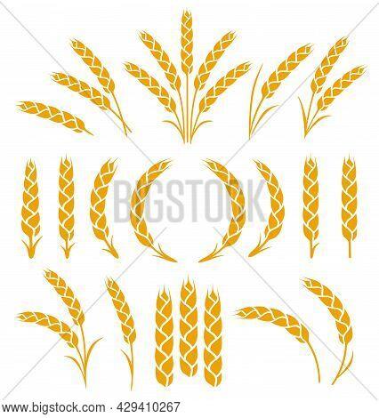 Wheat, Barley, Rye Spikelets And Ears Silhouette Set