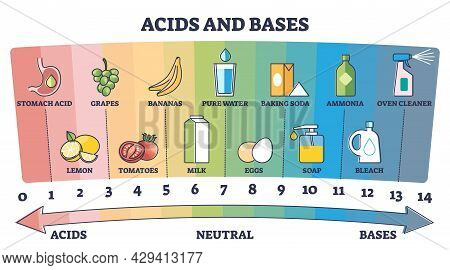 Acids, Neutral And Bases Substances Scale With Examples Outline Diagram. Labeled Educational Chemica
