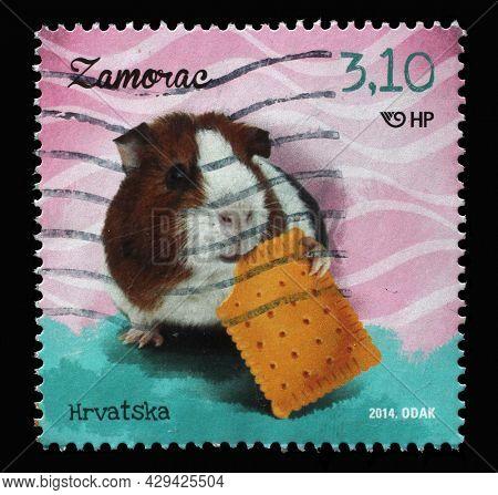 ZAGREB, CROATIA - SEPTEMBER 11, 2014: A stamp printed in Croatia shows Guinea Pig (Cavia porcellus), series, Children's World - Pets, circa 2014