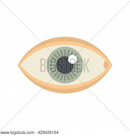 Mission Eye Icon. Flat Illustration Of Mission Eye Vector Icon Isolated On White Background