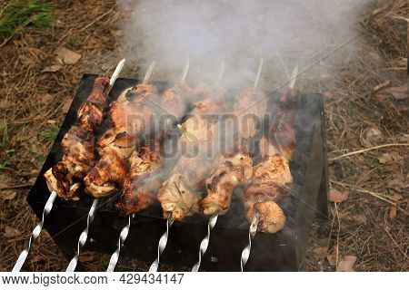 Raw Pickled Juicy Pork Meat On Grill Grill Grills. Fresh Produce Prepared For Barbecue. Summer Cooki