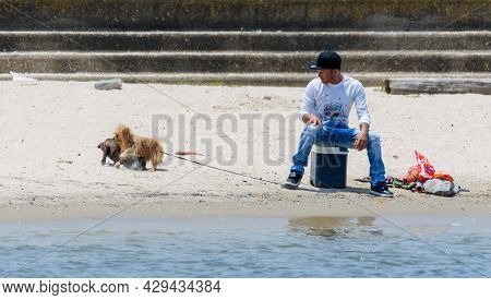 New Orleans, La - August 1: Young Man On The Beach Watches His Dogs Wrestle Along Lake Pontchartrain