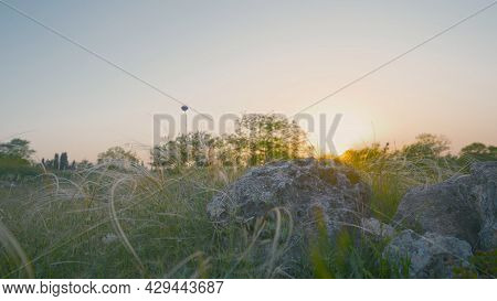 Beautiful Steppe Grasses With Stones On Background Of Dawn. Action. Bottom View Of Ears Of Steppe Gr