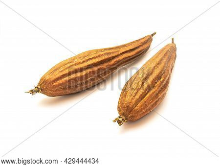 Close-up Two Dried Luffa Fruits For Seeds Saving And Sponge Isolated On White