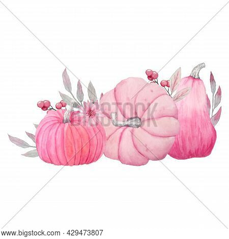 Hand Drawn Watercolor Illsutration Of Fall Autumn Pastel Soft Pink Pumpkins With Grey Leaves And Flo