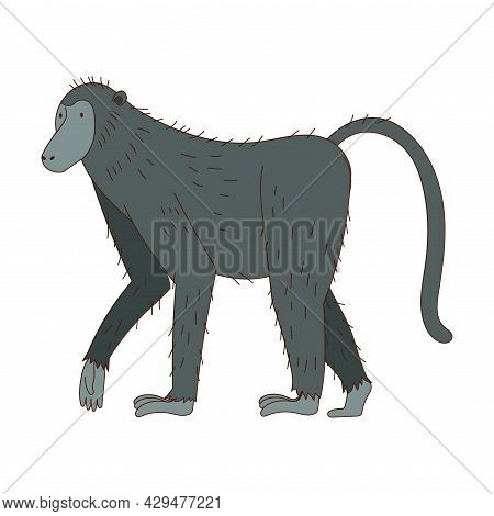 Monkey As African Animal With Long Tail Walking Vector Illustration