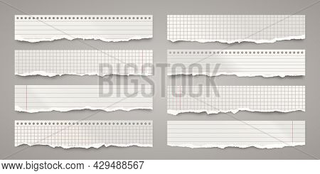 Long Ripped Paper Strips. Realistic Crumpled Paper Scraps With Torn Edges. Lined Shreds Of Notebook
