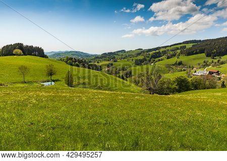 Hilly Landscape In  Black Forest, Baden-wuerttemberg, Germany