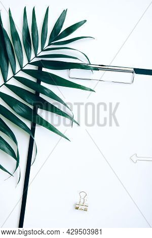 Black Clipboard With Blank Paper, Golden And Evergreen Plant Clip With Copy Space