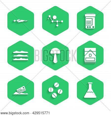 Set Psilocybin Mushroom, Medicine Pill Or Tablet, Test Tube And Flask, Cigarettes Pack Box, Cocaine