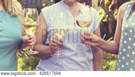 Anonymous Girlfriends Clinking Glasses Of Wine While Standing In The Garden During Gathering. Celebr