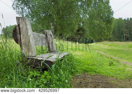 Natural Summer Landscape With Old Wooden Bench, Concept Of Solitude And Loneliness, Loss And Sadness