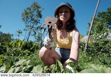 Girl Farmer Removes The Weeds. Field With Potatoes And Beetroot. Agriculture. Hot Sunny Day