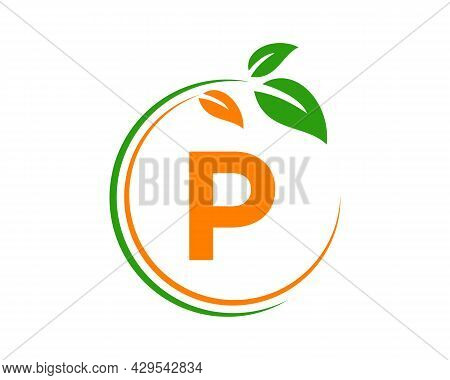 Eco Logo With P Letter Concept. P Letter Eco Healthy Natural Logo