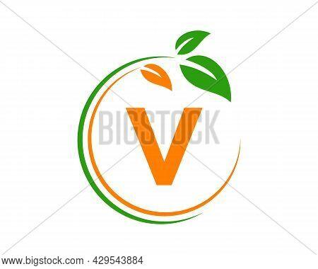 Eco Logo With V Letter Concept. V Letter Eco Healthy Natural Logo