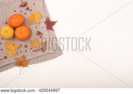 Autumn Flat Lay. Pumpkins And Maple Leaves Viburnum And Cinnamon And Acorns On A Gray Plaid On A Whi