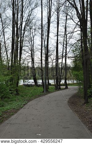 Spring Park Landscape. View Of The Asphalted Alley Of The Park, The Bridge, About The Lake.