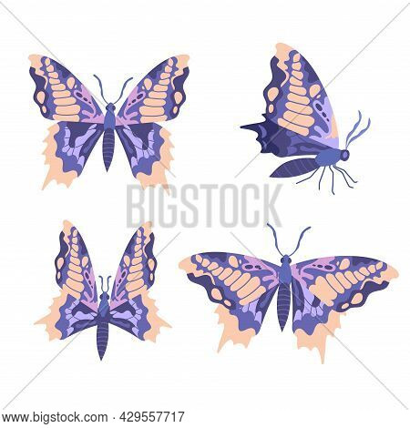 Collection Of Blue Butterflies On White Background. Concept Of Beautiful Flying Insects With Colorfu