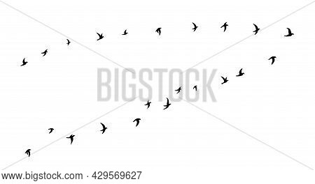 Black Flying Birds Flock Silhouette. School Of Birds Flying To The Right. Flat Vector Illustration I