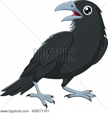 Vector Illustration Of Cartoon Crow Isolated On White Background
