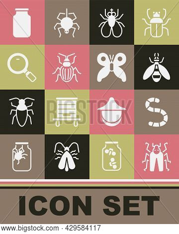 Set Beetle Bug, Worm, Insect Fly, Chafer Beetle, Magnifying Glass, Glass Jar And Butterfly Icon. Vec