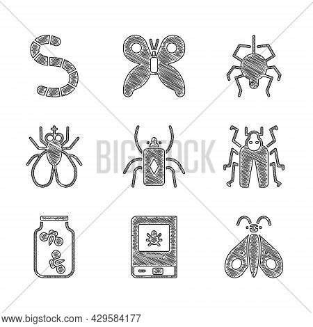 Set Beetle Bug, Book About Insect, Butterfly, Fireflies Bugs Jar, Insect, Spider And Worm Icon. Vect