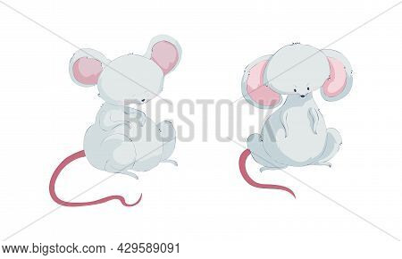 Cute Funny Mouse Characters Set. Lovely Well Fed Mice Sitting On Floor Cartoon Vector Illustration