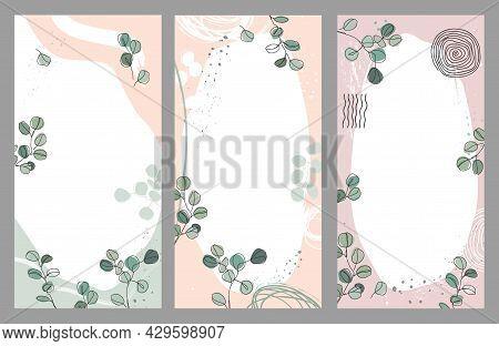Set Of Silver Dollar Eucalyptus Branches Vector Templates. Design For Social Media Stories, Event In