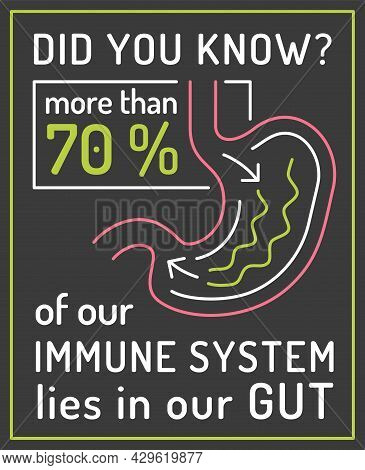 More Than 70 Percent Of Our Immune System Is Located In Our Gut.
