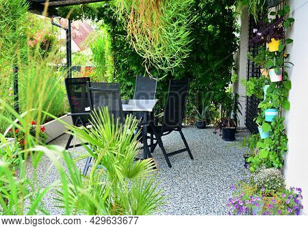 Beautiful Outdoor House Patio With Stone Carpet Flooring, Growing Green Flowers And Plants, And Tabl