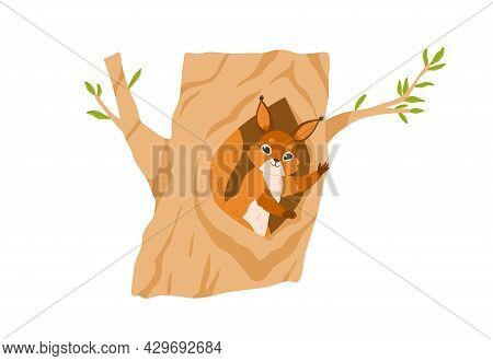 Cute Squirrel In Tree Hole, Waving With Paw, Gesturing Hi. Happy Animal Inside Hollow In Trunk. Smal