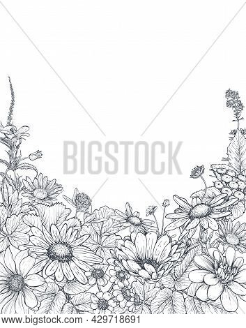 Floral Backgrounds With Hand Drawn Wildflowers And Plants. Monochrome Vector Illustration
