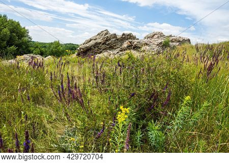 Outcrops Of Paleogene Rocks In The North Of The Rostov Region. A Light Angular Rock Among Lush Green