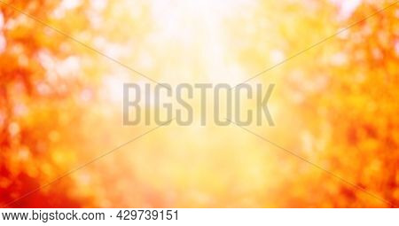 Orange Blurred Natural Background. Abstract Autumn Background With Bokeh.