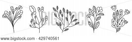 Set Of Cute Linear Wildflowers On White Background. Concept Of Beautiful Floral Template For Further