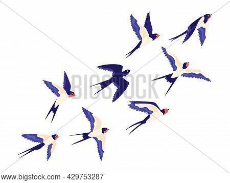 Flat Small Swallow Bird Flock Flying In Air. Cartoon Group Of Barn Swallows Freedom Flight In Sky. P